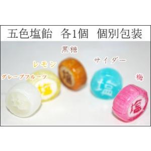 五色塩飴 個別包装 各1個 計5個 熱中症対策