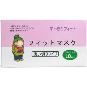 【訳アリ】 不織布マスク 大人用フリーサイズ 10枚入|kintarou