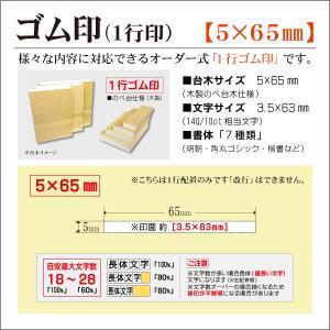 「5×65mm」オーダーゴム印 一行 台木5mm 文字約10pt 1行はんこ 氏名 事務 科目 住所 学校 kippo