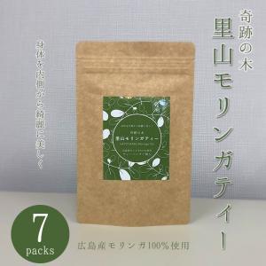 モリンガティー モリンガ茶 モリンガ 広島産 ティーパック 栄養 無農薬 広島|kira-bsmile