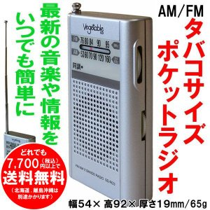 AM/FM ポケットラジオ GD-R03 ベジタブル 簡単操作 ご年配にも 災害時等非常用にも [free]|kirakuya