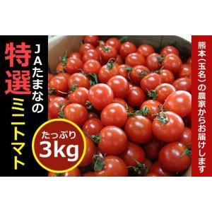 ミニトマト3k(全国最大級の生産地)☆九州・熊本県JA玉名の名産です。|kiramekitamana