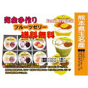 トロピカルフルーツゼリー6個入(マンゴー、ドラゴンフルーツ等)九州・熊本県|kiramekitamana