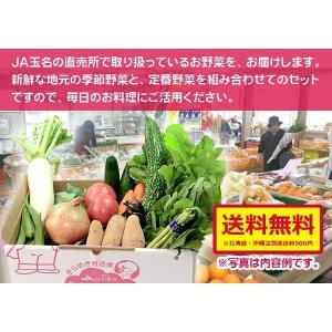 新鮮野菜の詰め合わせ12品目を送ります。|kiramekitamana