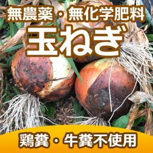 農薬・化学肥料・除草剤不使用 玉ねぎ2キロ+玉ねぎドレッシング295ml付(賞味期限21年6月26日) ※送料無料(一部地域を除く) kirarasizen
