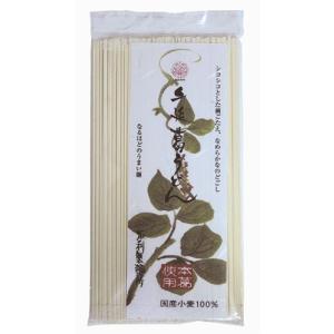 手延 吉野葛うどん 200g 【坂利製麺】 kirarasizen