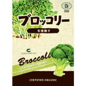 有機種子 ブロッコリー(育て方説明書付) ※ゆうパケット250円で発送(最大24個)の場合、代引不可・同梱不可|kirarasizen