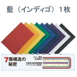 ホルミシスカラーパッド (藍インディゴ1枚)※詳しい使用説明書付※キャンセル不可 kirarasizen