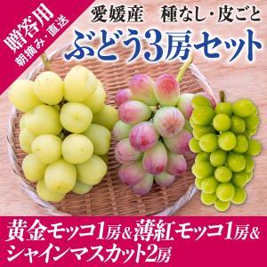 3房詰合せ(黄金モッコ1房+薄紅モッコ1房+シャインマスカット1房) kirari-fruits-farm