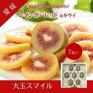 キウイフルーツ レインボーレッドキウイ 赤いキウイ スマイルレインボー ギフト お歳暮 6個入り 農家直送 愛媛県産 11月中旬発送開始 |kirari-fruits-farm