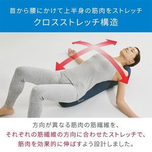 【ポイント最大25%】Style Athlete Pole 【スタイルアスリートポール】 kirei-mitsuketa 02