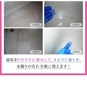 技職人魂 風呂職人 スプレーボトル 500ml 掃除 お風呂 洗剤|kirei-supple|06