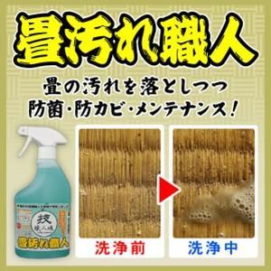 畳用洗剤 畳専用 畳のカビ 畳汚れ職人 技職人魂 500ml 即納