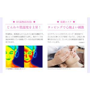 美顔器 美ルルプレミアム belulu Premium kireido 12