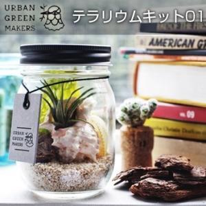 UrbanGreenMakers アーバングリーンメーカーズ テラリウムキット01(エアプランツを飾る/おしゃれ/グリーンのキット/部屋のインテリア/おすすめのグッズ/お部屋) kireispot