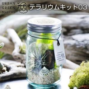 UrbanGreenMakers アーバングリーンメーカーズ テラリウムキット03(エアプランツを飾る/おしゃれ/グリーンのキット/部屋のインテリア/おすすめのグッズ/お部屋) kireispot