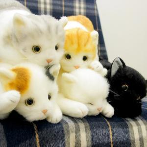 即納 リアル ねこのぬいぐるみ 58cm(リアルな猫のぬいぐるみ/プレゼントに人気のネコのかわいいぬいぐるみ/6種類から選べる/癒し猫)【無料ラッピング対応可】