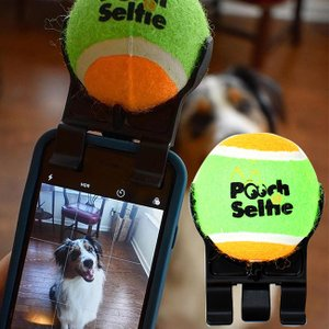 プーチセルフィー Pooch Selfie(スマホやタブレットで愛犬とセルフィーを撮るのに便利なグッズ スマートフォンにクリップで付けるスマホグッズ 撮影におすすめ)|kireispot