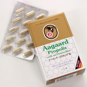 ドイツ・レホルム製品 ベルナー社 アーガード プロポリス 60粒(健康食品)