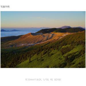 SONY 単焦点レンズ Sonnar T* FE 55mm F1.8 ZA フルサイズ対応