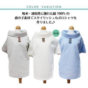 犬服  クークチュール(鹿の子クールポロシャツ (3色)12026) クール&防虫  25度を境に暑い時は吸熱!寒い時は放熱! モデルはココとエール!|kirinclub