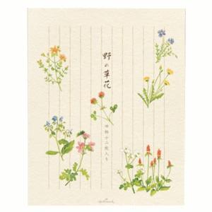 ホールマーク 野の草花 レターパッド 縦罫入り 210cm×165mm 4柄×12枚入 【文具】