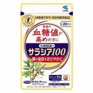 小林製薬 サラシア100 60粒(20日分)の関連商品2
