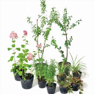 送料無料【オンリーワン】ピンクの花たちがチャーミングな雰囲気