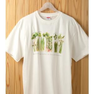 山菜図鑑Tシャツ バニラホワイト XLサイズ kiru-sansai