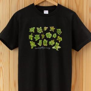 ふきのとうTシャツ ブラック|kiru-sansai