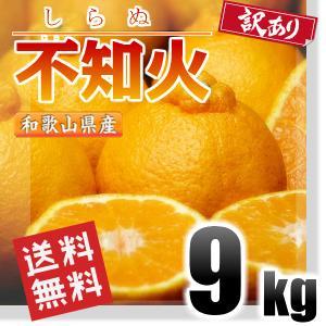 訳あり 不知火 しらぬい (デコポン同品種) 10kg 和歌...