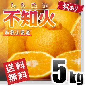 訳あり 不知火 しらぬい (デコポン同品種) 5kg 和歌山...