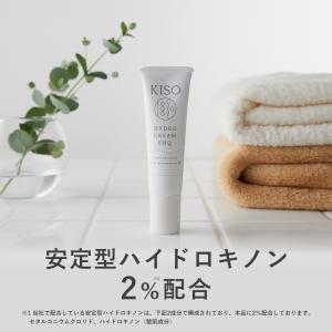 安定型ハイドロキノン2%配合した美肌クリーム。 ナノ化クリーム処方を採用し、お肌へ効率よく成分を供給...