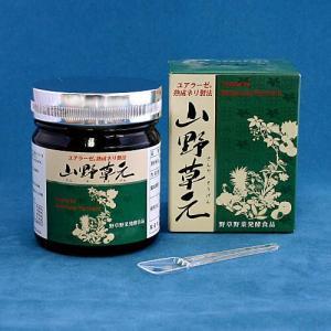 山野草元 ねり酵素 ミヤトウ野草研究所 300g|kisshou