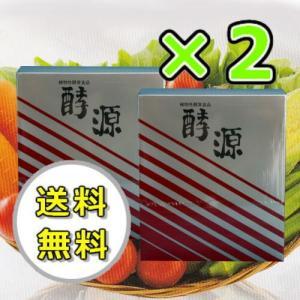 大和酵素 酵源 こうげん 植物性酵素 粉末 梅エキス 2個|kisshou