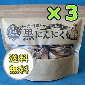 黒にんにく 九州産熟成ニンニク 占部大観堂製薬 170g×3個|kisshou