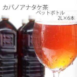 カバノアナタケ茶(かばのあなたけ茶)チャーガ茶ペットボトル 2リットル、6本入り 幻のキノコ キノコジュース キノコ茶 チャーガティ|kissui