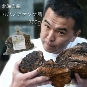 カバノアナタケ茶(かばのあなたけ茶)チャーガ茶100% 塊(原体)700g 北海道産 キノコジュース キノコ茶 チャーガティ【メール便対応】|kissui