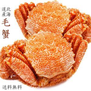 ボイル毛がに2尾 (720g) セット 送料無料 (ボイル毛蟹姿)|kissui