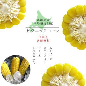 ピクニックコーン 10本 (北海道産とうもろこし) 生でも美味しい朝もぎフルーツトウモロコシ!幻の糖度18以上 ※送料無料|kissui