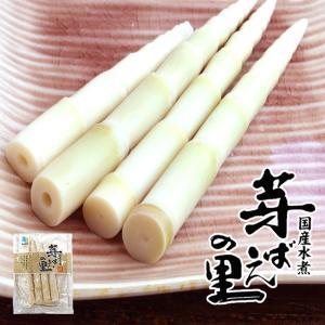 たけのこ60g(国産タケノコ水煮)(山菜水煮 ねまがりたけ 竹の子 山菜 笹の子 笹竹 ヒメタケ 月山竹 山竹)ご飯のお供、お酒の肴にもお使い頂けます|kissui