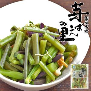 山菜ミックス110g(みず・わらび・えのき・たけのこ・なめこが入った水煮)(芽ばえの里)山菜独特の食感と風味がたまらない国産水煮。|kissui