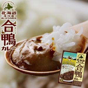 合鴨カレー180g×2個セット(中辛)北海道滝川産あいがも肉を味わい深いルーに入れて煮込みました(レトルトカレー アイガモ ご当地カレー|kissui