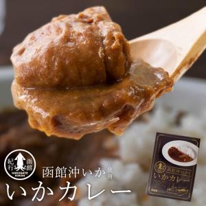 いかカレー(中辛)函館沖いか使用イカの旨味がおいしい 北海道函館沖で獲れた烏賊を味わい深いルーに入れて煮込みました シーフードカレー|kissui