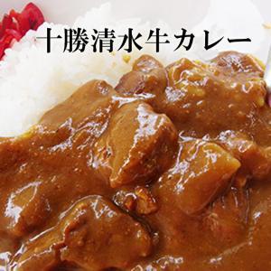 十勝清水牛カレー×2個セット≪北海道十勝清水牛使用≫(中辛)medium spicy Tokachi Shimizu Beef Curry(ご当地カレー)【メール便対応】|kissui