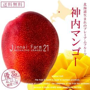 神内マンゴー優品4Lアップ1玉 化粧箱(北海道産 完熟マンゴー)糖度12度以上(アップルマンゴー アーウィン種)(送料無料)|kissui