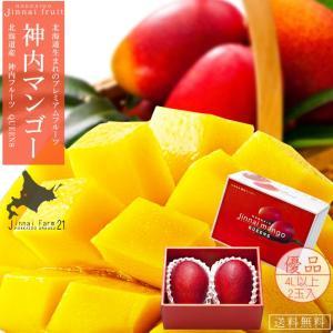 神内マンゴー優品4Lアップ×2玉入 化粧箱(北海道産 完熟マンゴー)糖度12度以上(神内ファーム21)(送料無料)|kissui