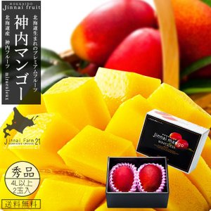 神内マンゴー秀品4Lアップ×2玉入 化粧箱(北海道産 完熟マンゴー)糖度14度以上 (神内ファーム21)(送料無料)|kissui