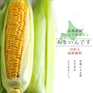 あまいんです 10本セット 甘すぎるとうもろこし 北海道産朝もぎとうきび フルーツトウモロコシ スイーツコーン 送料無料|kissui