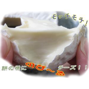 手づくりカマンベールチーズ 缶タイプ135g(もちもちのちーず)白かびチーズ≪北海道小林牧場物語≫ほっかいどうこばやしぼくじょう kissui 05